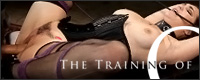 Visit The Training of O